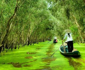 Mekong Delta - friendly destination in Vietnam - Vietnam travel blog