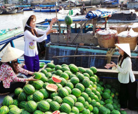 A boat of watermelon at Cai Rang floating market - Mekong delta tour